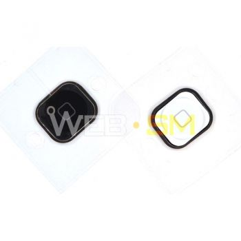 Tasto home iPhone 5C